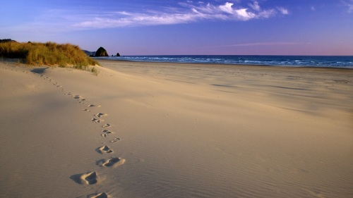 Footprints in the Sand, Oregon Coast